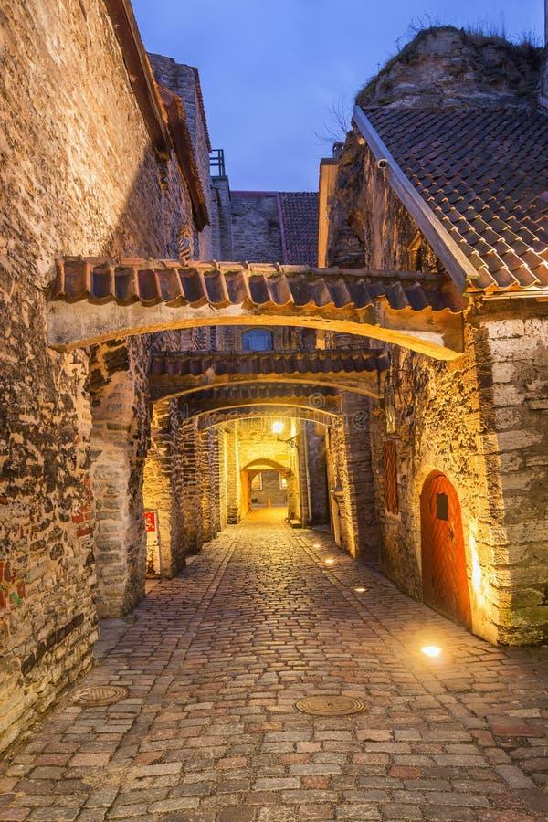 Cidade velha de Tallinn, Estónia imagem de stock royalty free