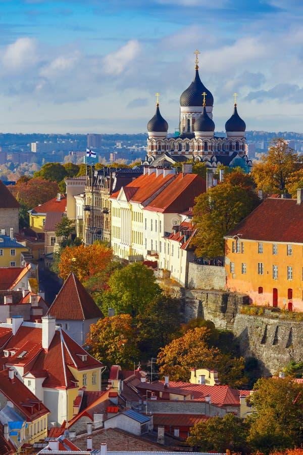 Cidade velha vertical da vista aérea, Tallinn, Estônia imagem de stock