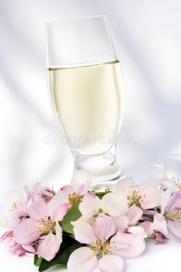 Download Cider and apple blossoms stock image. Image of branch - 11638461