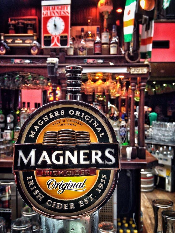 Cidra de Magners fotografia de stock