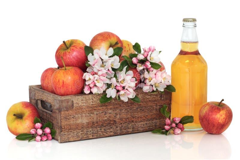 Cidra, maçãs e flor da flor foto de stock