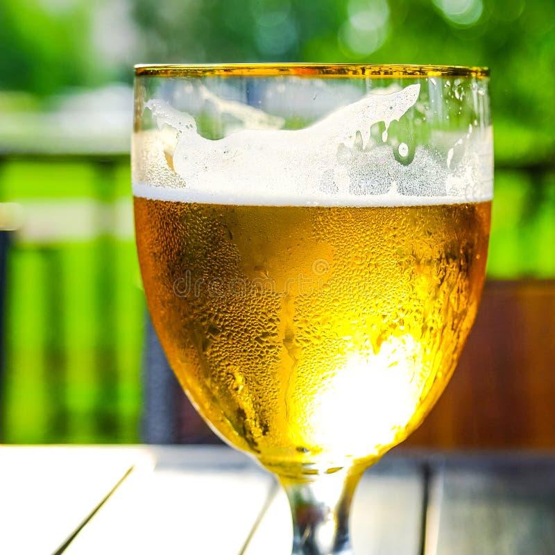 Cidre d'Apple Boisson alcoolisée dans un verre misted images libres de droits