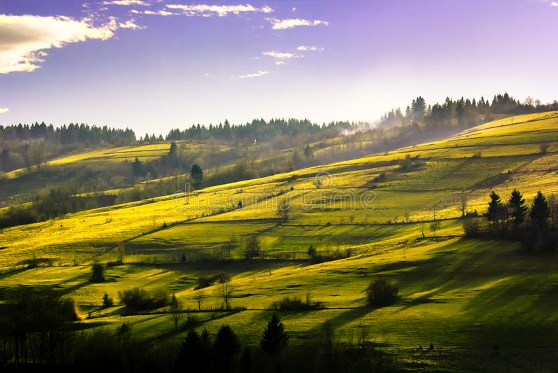 Cień łąka w Knezevo obrazy stock