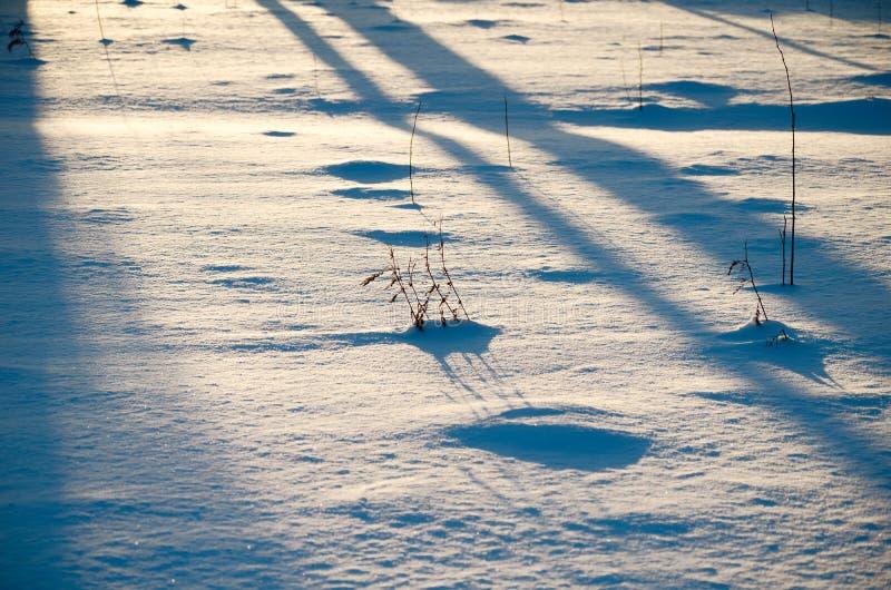 Cień śnieg - tło wizerunek zdjęcie stock