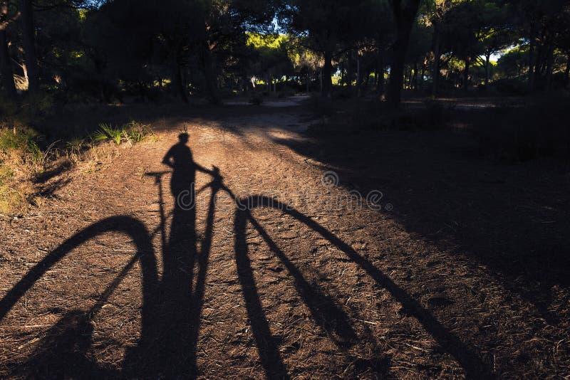 Cień cyklista i jego rower górski fotografia royalty free