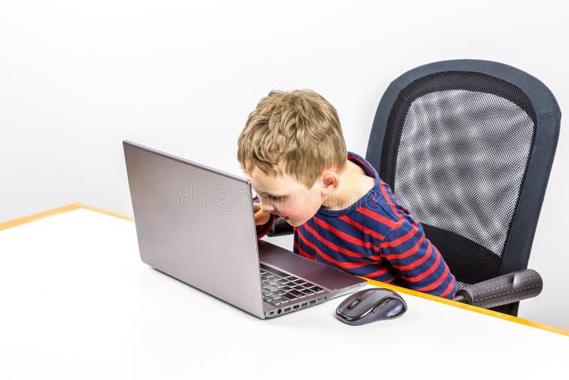 Ciekawa Kaukaska preschool chłopiec używa laptop, studio strzał fotografia stock