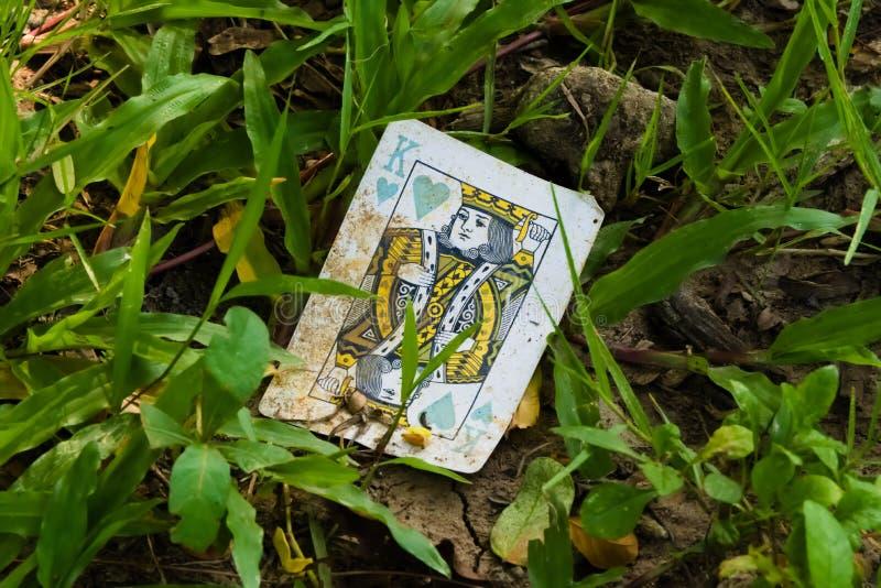 Ciekawy widok brudna, stara i odrzucająca karta do gry, królewiątko serca, znajdujący w trawie w uprawia ogródek parka zdjęcia royalty free