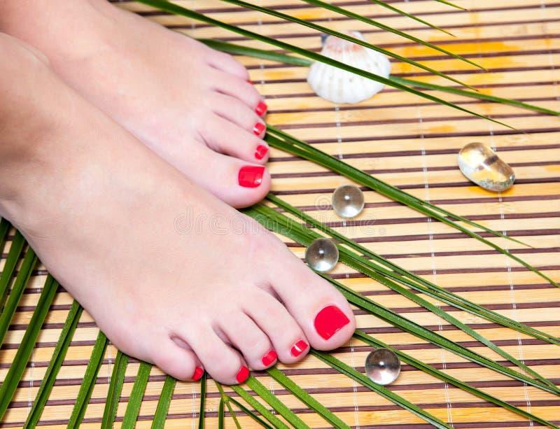 Cieki iść na piechotę z bambusem zdroju pedicure'em na bambusie fotografia royalty free