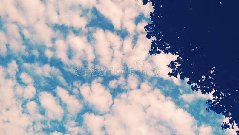 Ciel bleu étonnant images stock