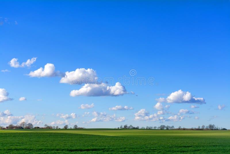 Ciel bleu avec des nuages au-dessus d'un paysage vert large de pays photographie stock libre de droits