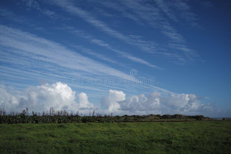 Ciel bleu chez la Nouvelle Zélande photos stock
