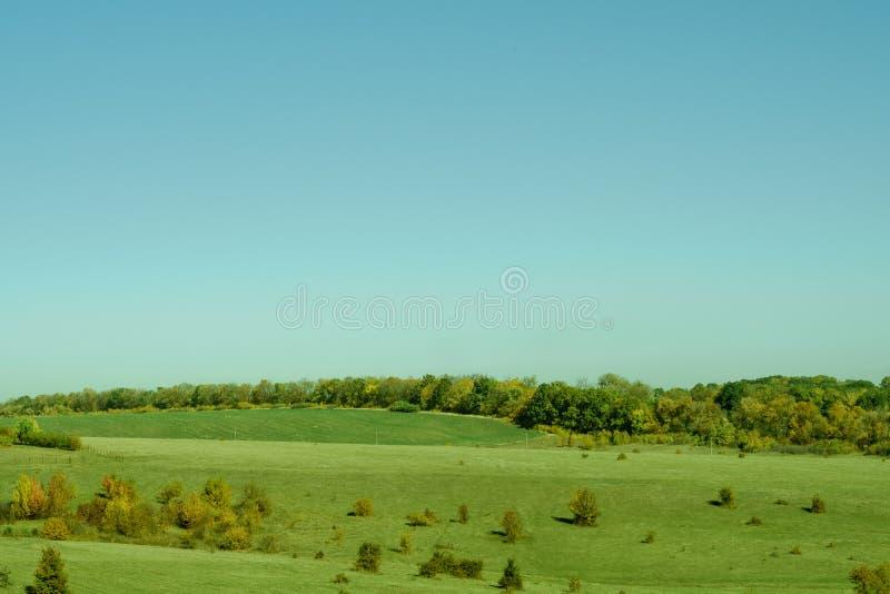 Ciel bleu d'arbres d'herbe verte de pré de paysage de nature image stock