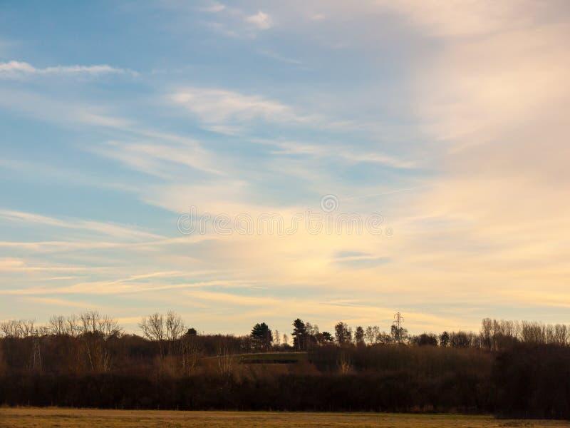 Ciel bleu de campagne avec la nature vide de l'espace d'horizon d'arbres photos libres de droits