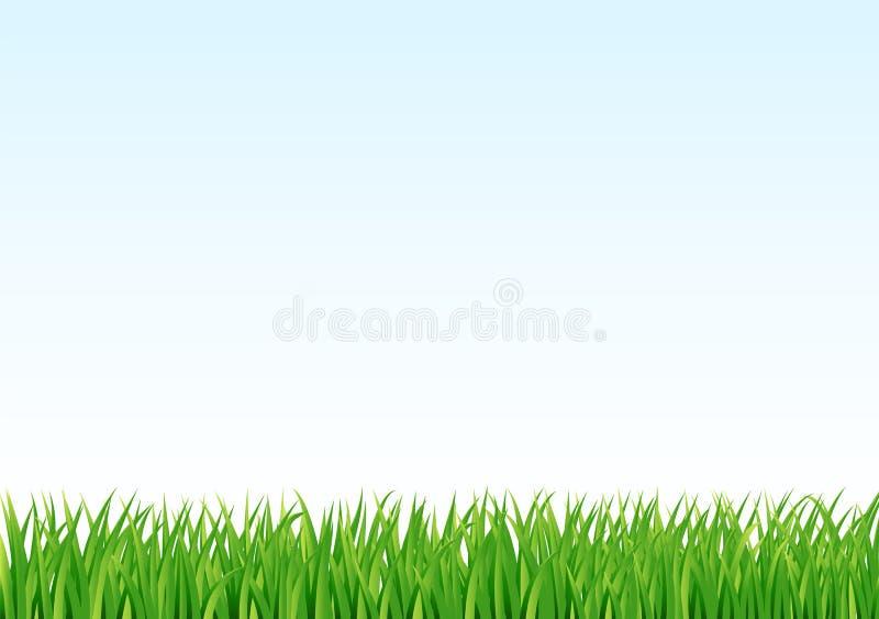 ciel bleu de vert d'herbe de fond illustration de vecteur
