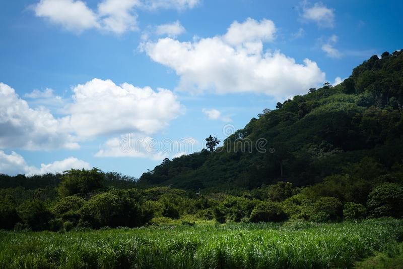 Ciel bleu et nuages de montagne de colline verte photographie stock