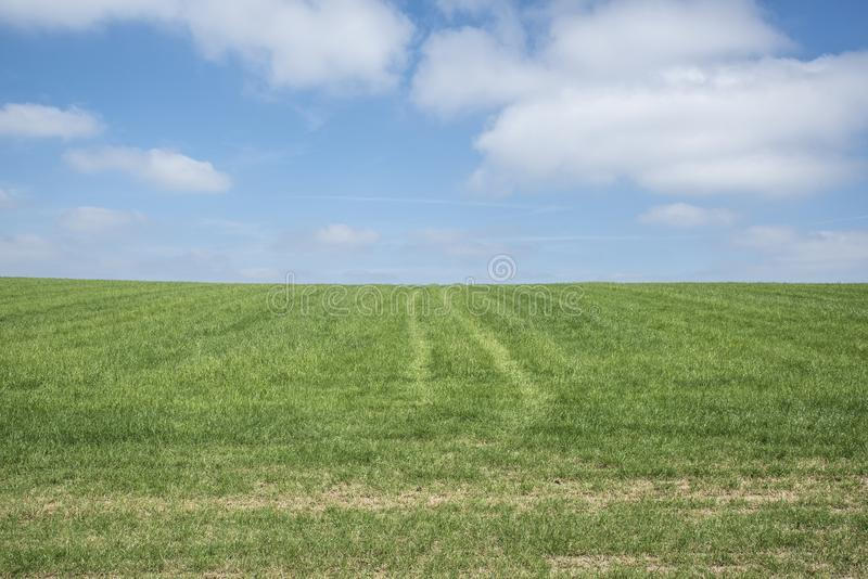 Ciel bleu, herbe verte, nuages blancs photos libres de droits