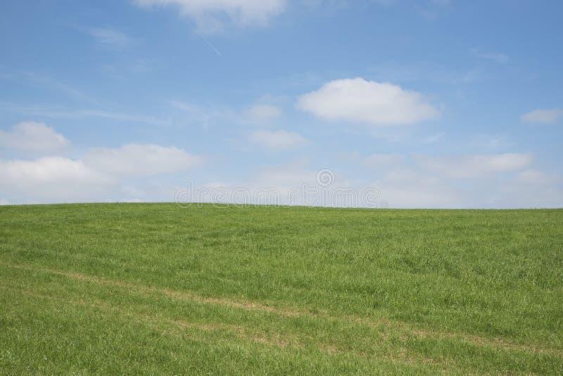 Ciel bleu, herbe verte, nuages blancs photo libre de droits