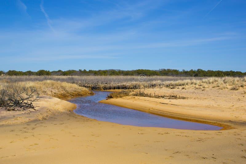 Ciel bleu, plage, paysage de courant image stock