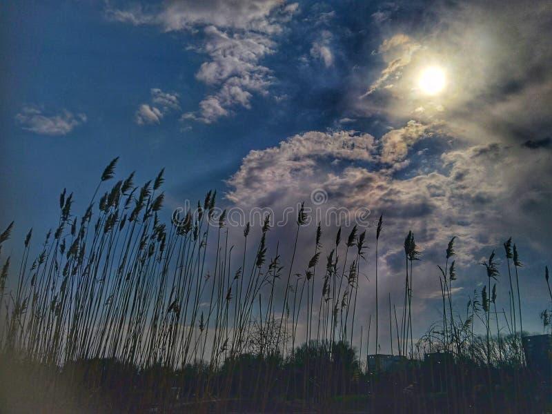 Ciel bleu sans fin photographie stock