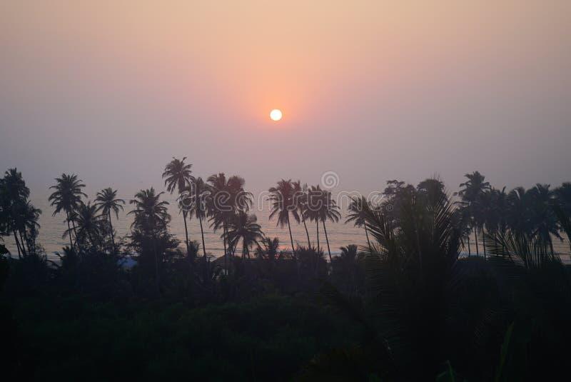 Ciel coloré de coucher du soleil en mer et des palmiers photos libres de droits