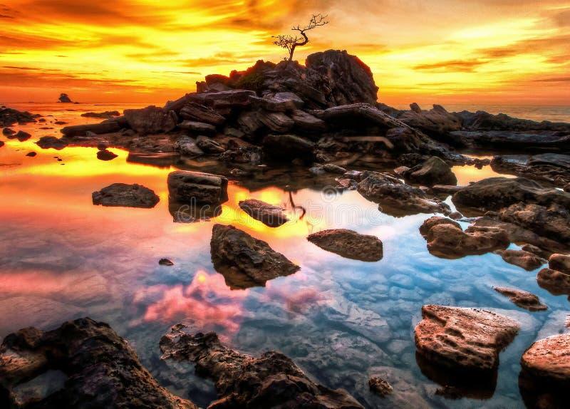 Ciel d'or de coucher du soleil photographie stock libre de droits