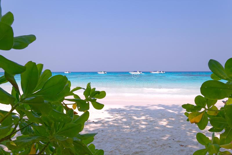 Ciel de bateau d'usine de plage d'île de Tachai photos stock