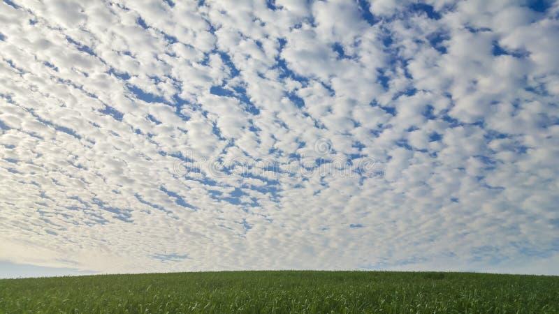 Ciel de matin photos libres de droits
