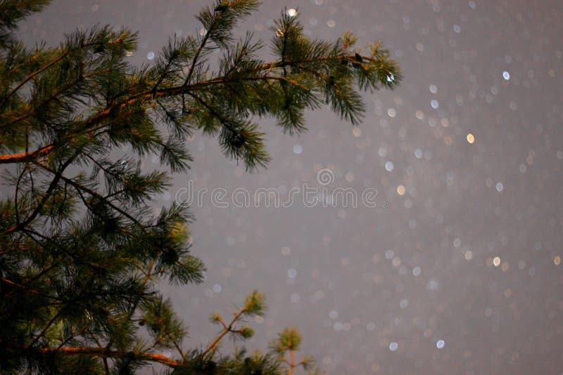 Ciel de nuit photographie stock