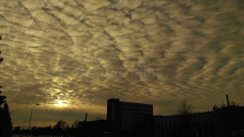Ciel de nuit en Lithuanie photos libres de droits