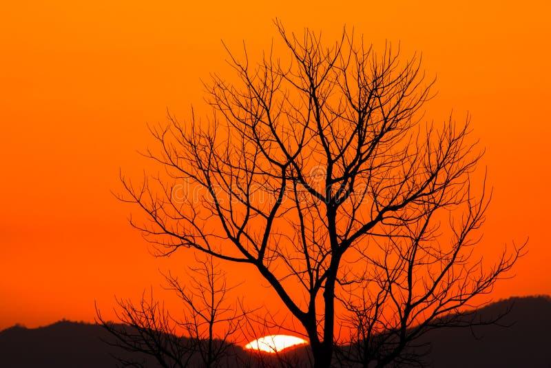 Ciel dramatique coloré avec le nuage au coucher du soleil photo stock