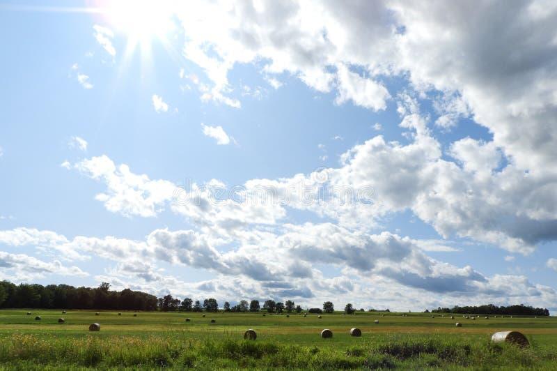 Ciel ensoleillé au-dessus des acres de balles de foin rondes dans FingerLakes photos libres de droits