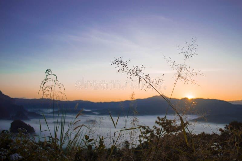 Ciel et brouillard de matin la saison d'hiver images stock