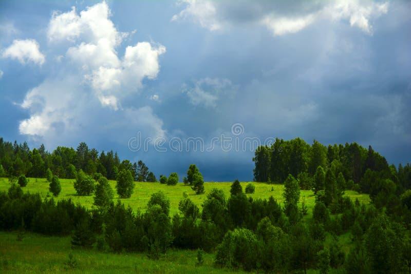 Ciel et forêt photos stock