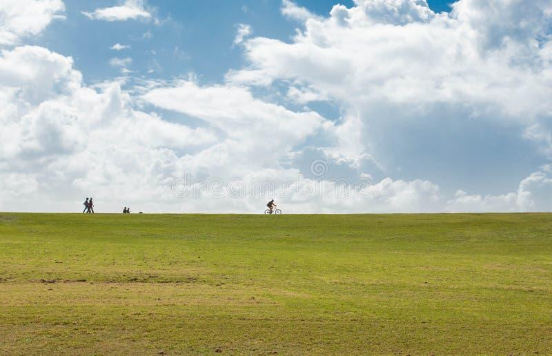 Ciel et herbe image stock