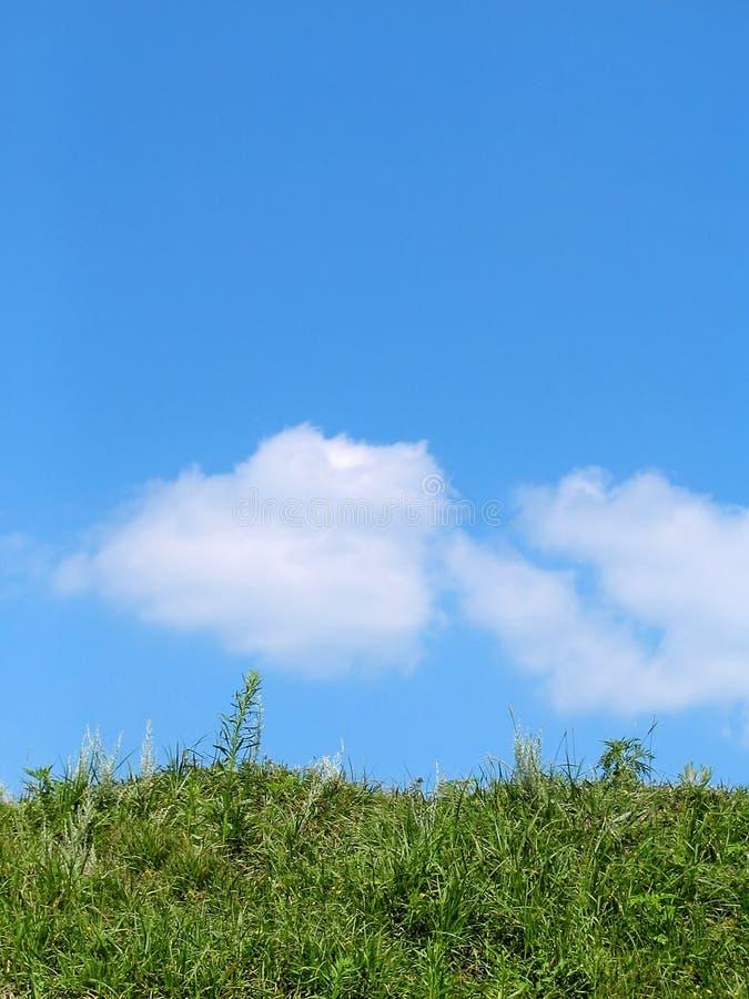 Ciel et herbe image libre de droits