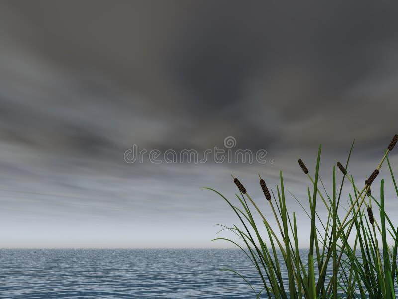 Ciel foncé illustration stock