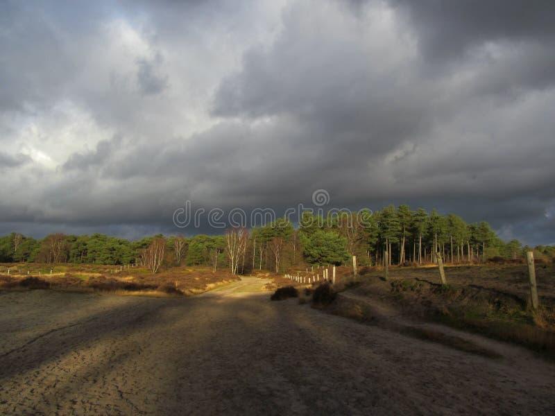 Ciel foncé au-dessus de Lage Vuursche photos libres de droits