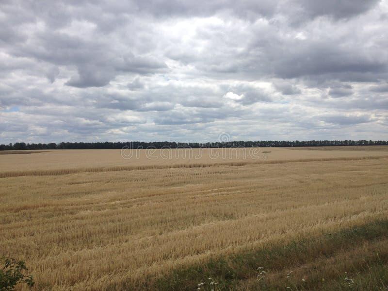 Ciel foncé avec des nuages photographie stock libre de droits