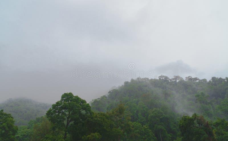 Ciel gris et pluie tombant sur les montagnes vertes images libres de droits