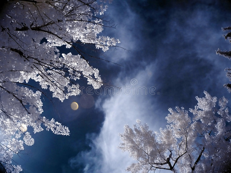 Ciel infrarouge photos stock