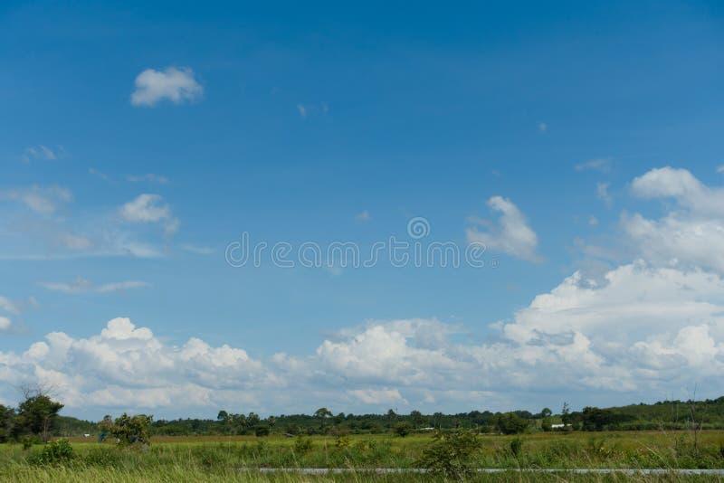 Ciel lumineux rempli de nuages blancs et de champs verts images stock