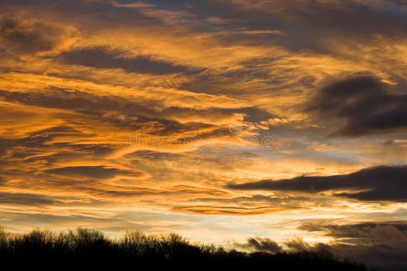 Ciel mignon excessif de coucher du soleil au-dessus d'un treeline image libre de droits
