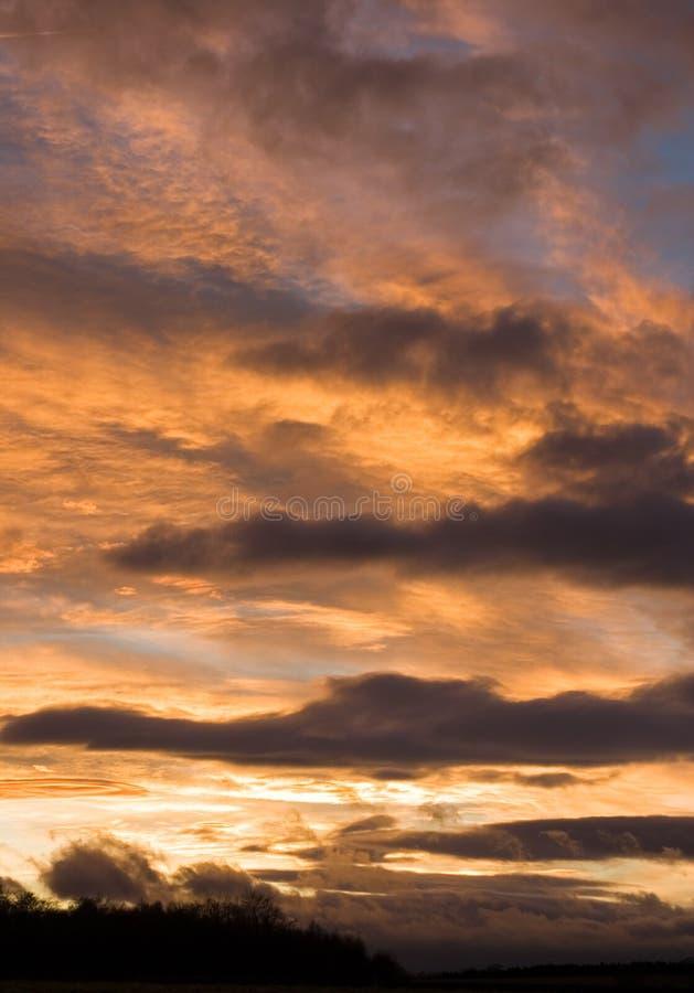 Ciel mignon excessif de coucher du soleil au-dessus d'un treeline photographie stock