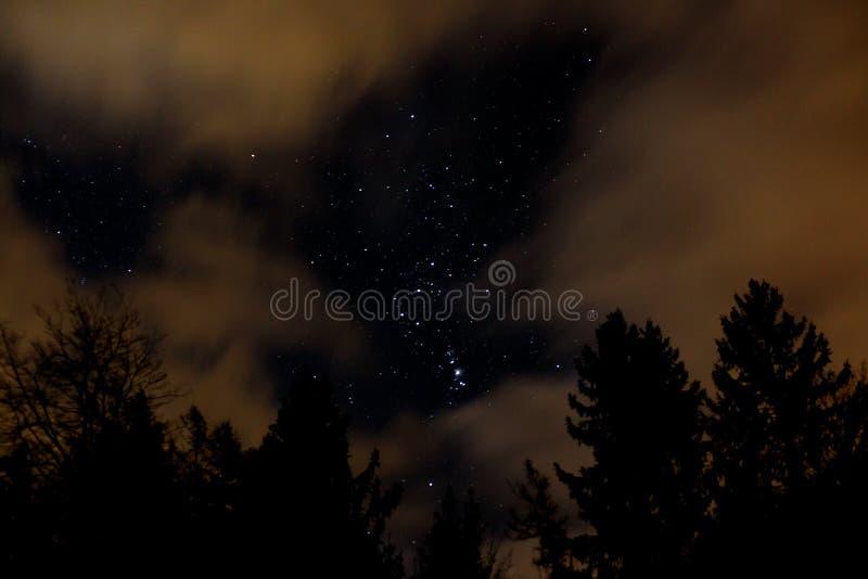 Ciel nocturne avec Orion, nuages et arbres photo stock