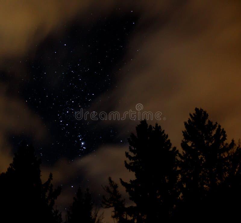 Ciel nocturne avec Orion, nuages et arbres photos libres de droits