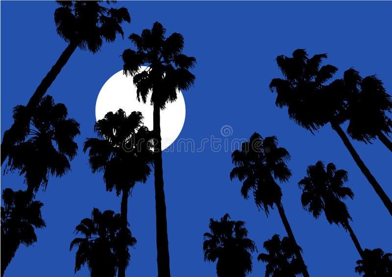 Ciel nocturne gentil illustration stock
