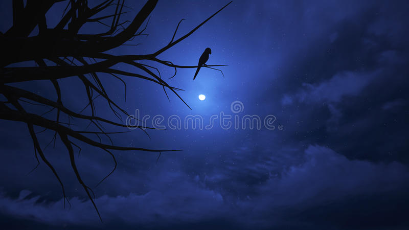 Ciel nocturne Halloween. images stock