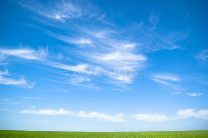 Ciel nuageux et herbe photos stock