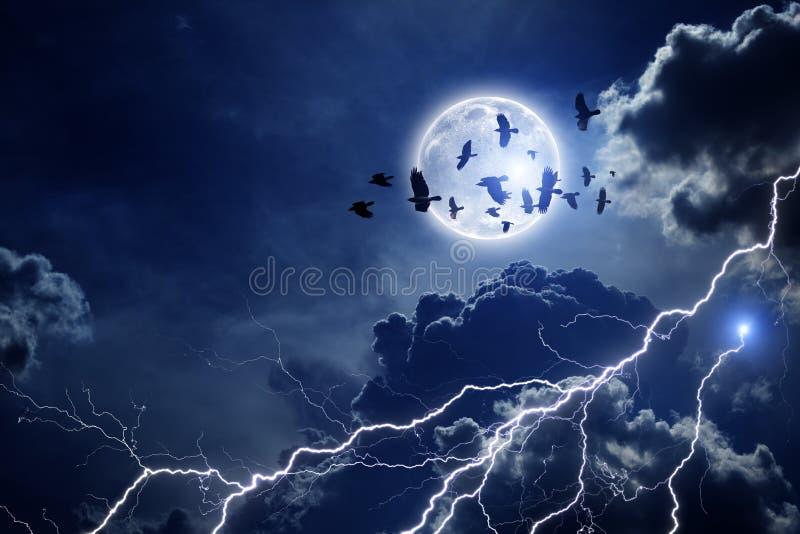 Ciel orageux, troupeau des corbeaux illustration stock