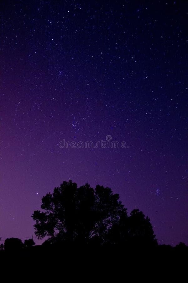 Ciel pourpre à la nuit et aux étoiles images stock